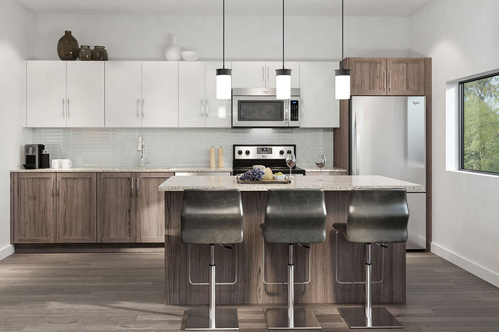 Museum BLVD - penthouse kitchen