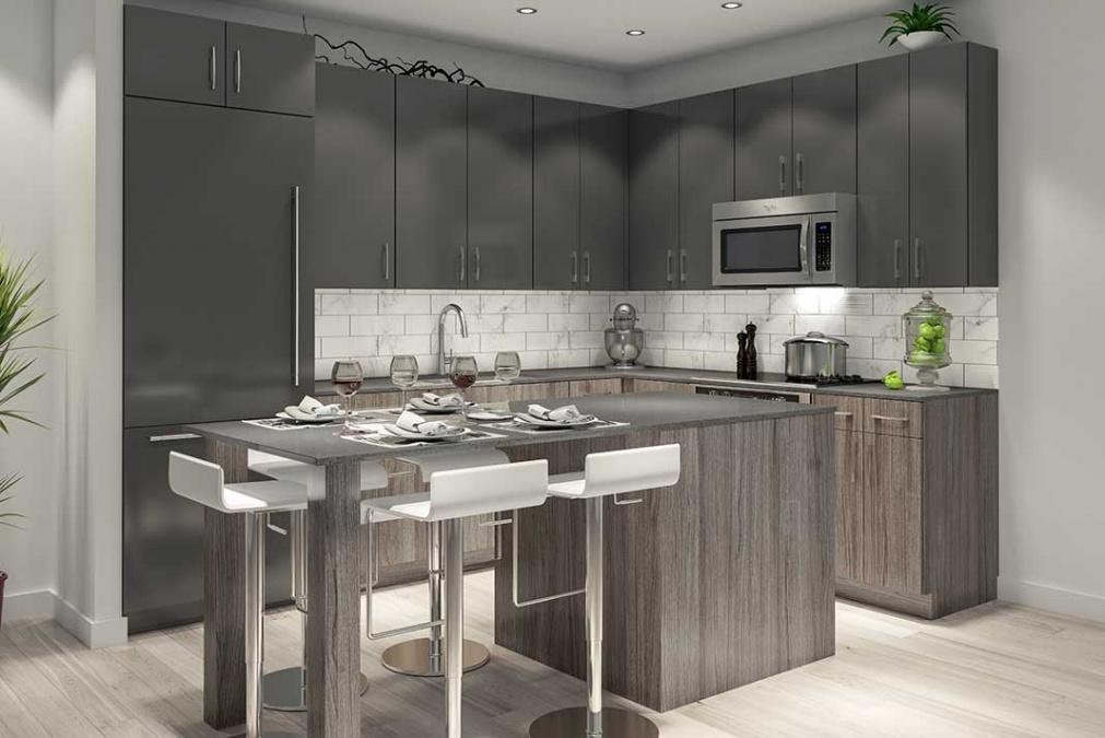 Museum BLVD condominium kitchen